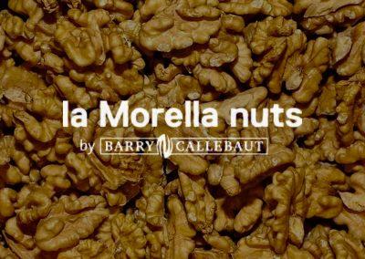 Treballs de manteniment Morella Nuts Reus