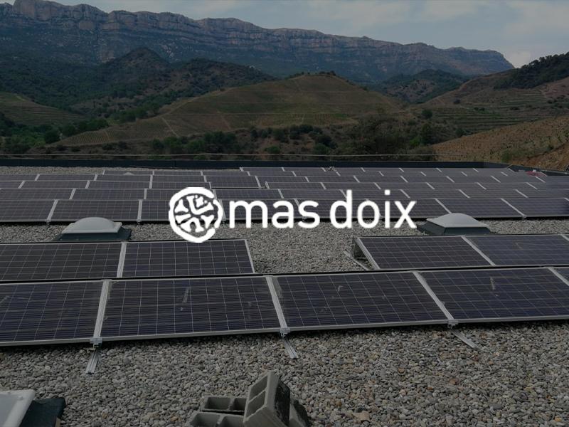 Construcció celler Mas Doix i instal·lació de camps solar