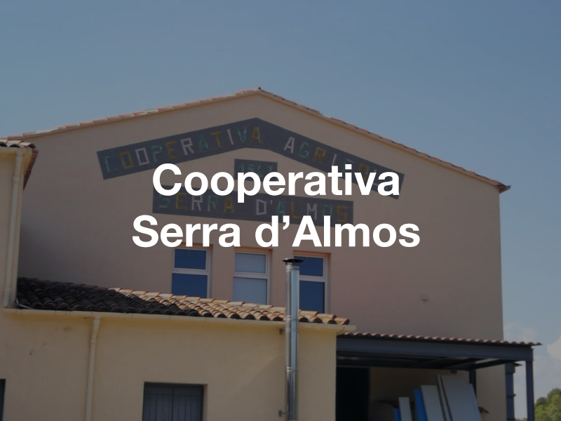 Reforma del moli d'oli – Cooperativa Serra d'Almos